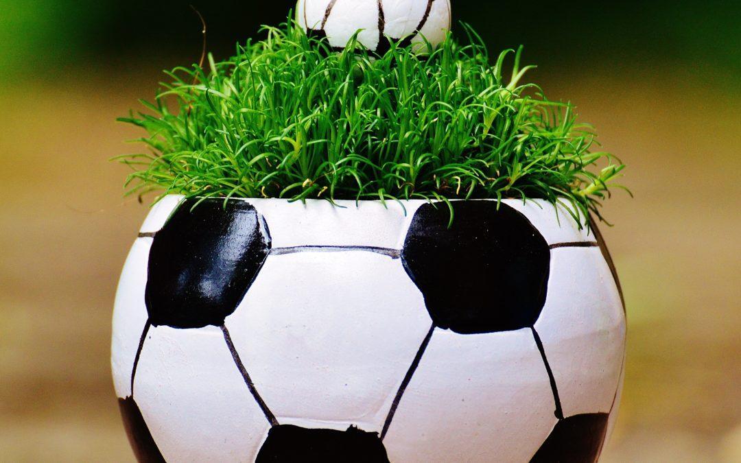 Séminaire – Terrains de sport synthetiques et naturels